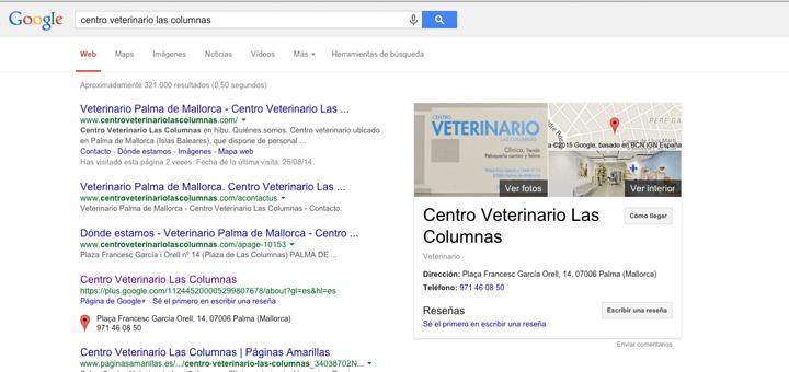 CentroVetGoogle