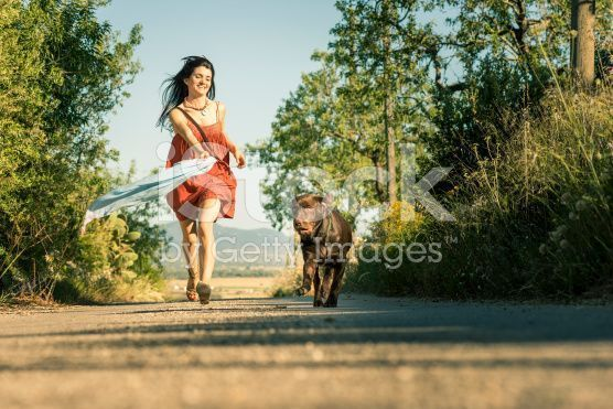 stock-photo-95309427-girl-with-pet-dog-walking-along-road-in-countryside